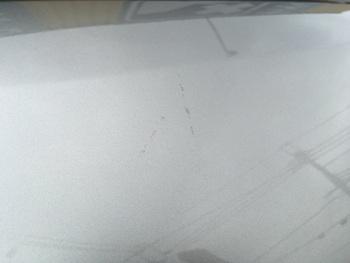 レクサスの街乗りSUV「NX」左ピラーのキズ修理 / 和歌山の板金塗装・自動車修理はプロモワカヤマ